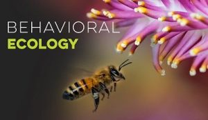 physiological/ behavioral ecology.