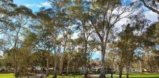 Clare Caravan Park Things to See