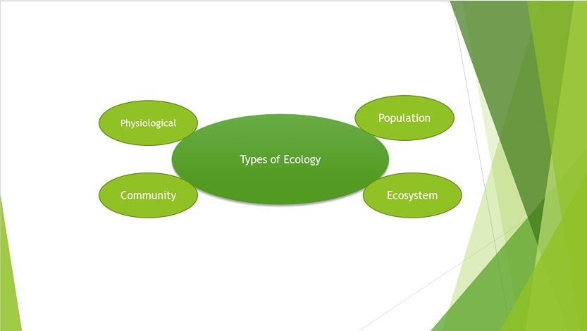 Different Kinds of Ecology