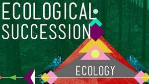 study of ecosystem ecology