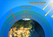 depletion ozone layer its causes effects and possible solu 1 ozone depletion causes, effects, controlling programmes and its recovery sivakumaran sivaramanan environmental officer, environmental impact assessment unit, environmental management and access.