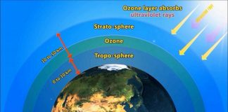 What Destroys Ozone Layers