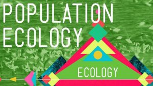 What is population Ecology