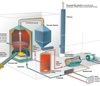 biomass review
