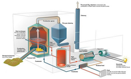 Use Of A Biomass Boiler To Create Clean Energy