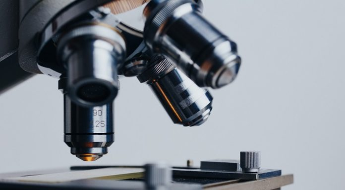 best microscope review
