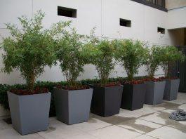 modern fiberglass planters