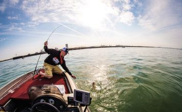 fly fishing for bass line weight