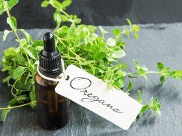 best wild oil of oregano
